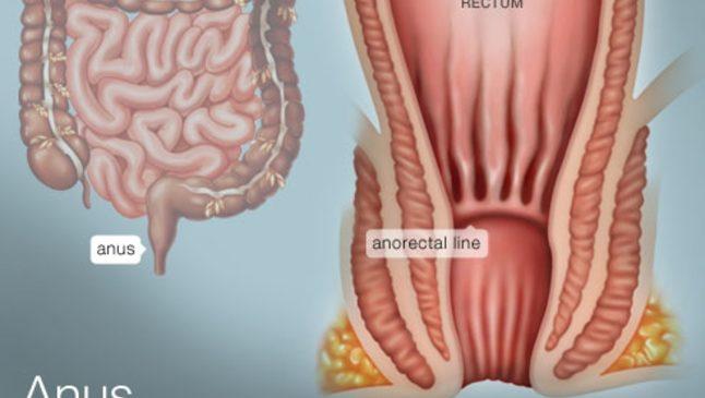 SEXUALITE : Lécher des anus est-il mauvais pour la santé ?