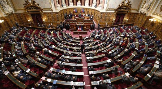 LE SÉNAT VOTE UNE AMENDE DE 29€/JOUR POUR LES PERSONNES TRÈS LAIDES