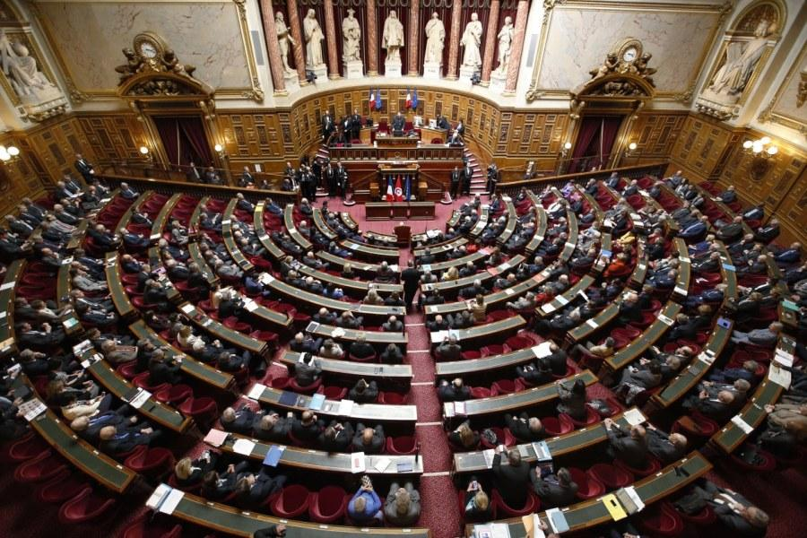 senat-article-ledependant-personne-moche
